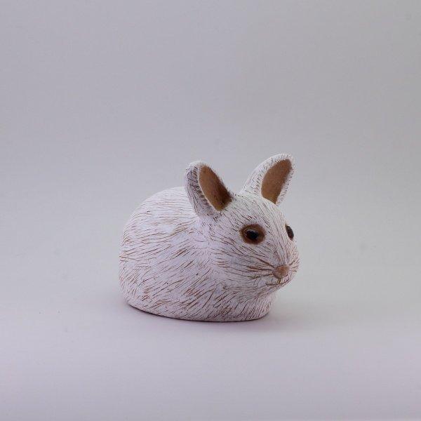 Pupu - Poikanen - Valkea